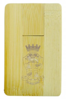 Card Usb in legno Arma Carabinieri (03CU3235)