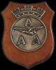 Crest Associazione Arma Aeronautica (004312009)
